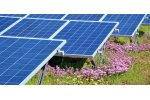 Bauder BioSOLAR - Integrated Mounting Solution for Photovoltaic Renewable Energy