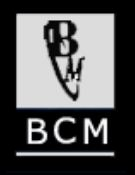 Black Country Metals Limited