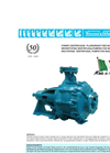 Model CM Series - Multistage Centrifugal Pumps Brochure