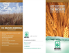 Wheat Brochure