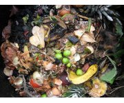 Thermophilic Co-composting of Human Wastes in Haiti