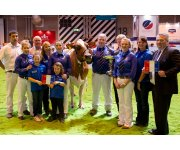 Livestock Event National Dairy Show Results 2014