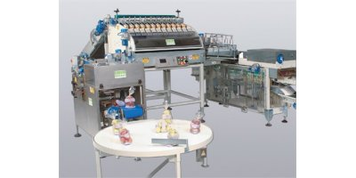 Model CP812MV-126 - Electronic Weigher