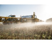 British Crop Production Council challenges Green Alliance`s opposition to glyphosate and GM crops