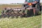 Model 132, 144, & 180 - 6 Row Sugarbeet Defoliator
