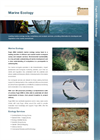 Marine Ecology Brochure