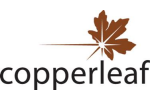Copperleaf - Version C55 - Decision Analytics Software