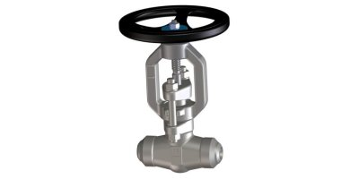 Model 06.6 - Bonnetless Forged Steel Gate Valves