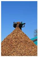 Mid Hants - Wood Chips