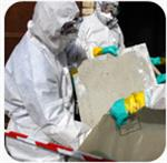 Asbestos / Lead / Mold Surveys & Compliance Service