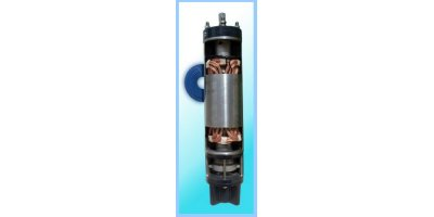 EMS - 8` Submersible Motors