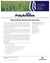 Poly Amines- Brochure