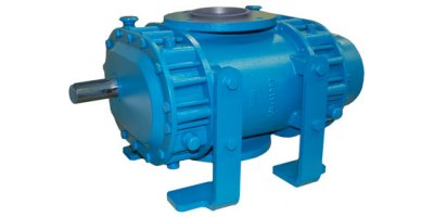 Model DF Series - Equalizer Rotary Positive Blowers