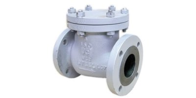 Class  - Model VR150BC - 150 - Bolted Cover Check Valves