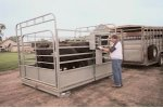 Not NTEP Approved Cattle Scale