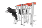 Walk Through Flat Barn Parlor System