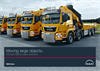 Crane Vehicles Sector Information