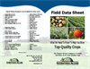Field Data Sheet