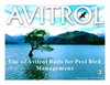 Avitrol Pest Bird Management Presentation pdf