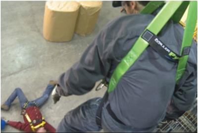 Surviving for Fall Protection Training