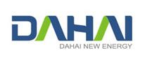 Shandong Dahai New Energy Development Co Ltd