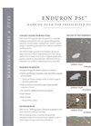 Enduron PSI Brochure