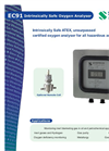 Intrinsically Safe Oxygen Analyzer EC91 English Brochure