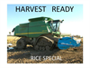 Harvest Ready Rice Brochure