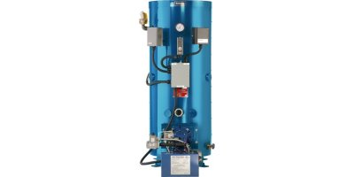 Model 300 Series  - Vertical Domestic Hot Water Boilers