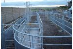 Permanent Sheep Handling Pens