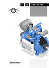 Model 300 - Water Cooled, Sliding Vane Vacuum/Pressure Pumps with Lubrication Brochure