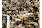 EUTR and UK Timber Regulations Services