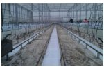 Ground Foil Used in Hydroponic Greenhouses