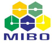 Mibo International Corp.
