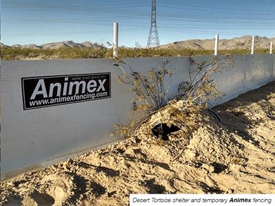 Animex - Solid Barrier Fencing