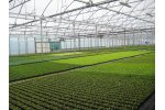 Truss - Model 12.80 - Poly Ventilation Greenhouse