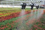 Irrigation Design Services