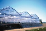 Arch - Model Series 6500 - Greenhouses