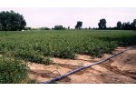 Micro Irrigation Drip System with Lay Flat Hose