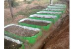 Agricultural Fertilizer