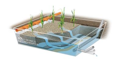 Horizontal Flow Reed Bed Plant