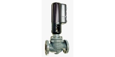 Model AVG3.0 - Linear Actuated Gas Valve