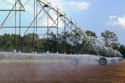 Irrigation method saves 50 percent of water needed for potato growth