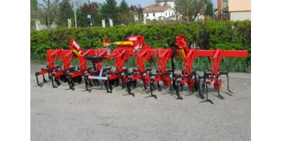 Model SH/SX/ DIANA - Inter-Row Cultivators With Straight Tines and Discs