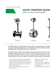 Multivariable - Model 602VF series - Mass Vortex & Volumentric Flow Meters Brochure