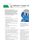 Model wPrime Series 280W-CI - Ultrasonicwater Meter - Datasheet