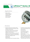 Model wPrime Series 280W-R Residential Ultrasonic Water Meter Datasheet