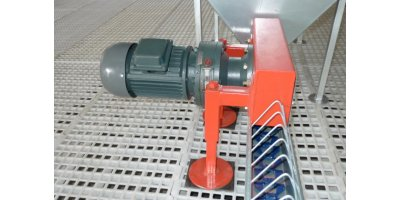 Poultry Chain Feeding System