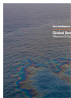 Global Seeps Services- Brochure