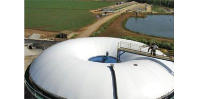 Top-Mounted Biogas Ring Storage and Biogas Storages with Bridges